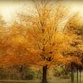 Golden Tree by Sandy Keeton