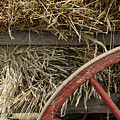 Grain Wagon by Robert Ponzoni