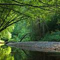 Green River by Evgeni Dinev