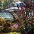 Greenhouse - The Greenhouse by Mike Savad