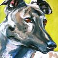 Greyhound by Susan A Becker