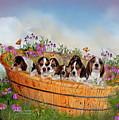 Growing Puppies by Carol Cavalaris