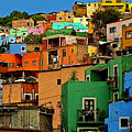 Guanajuato Hillside 1 by Mexicolors Art Photography