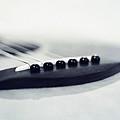 guitar II by Priska Wettstein