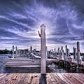 Gulf Coast Blues by Evelina Kremsdorf
