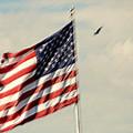 Happy Birthday America by Susanne Van Hulst