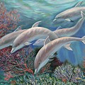 Happy Family - Dolphins Are Awesome by Svitozar Nenyuk