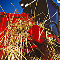 Harvesting by Meirion Matthias