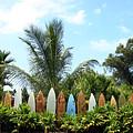 Hawaii Surfboard Fence by Michael Ledray