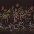 Hawkweed Dance by Dawn Fairies