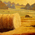 Hay Bales Of Bordeaux by Robert Lewis