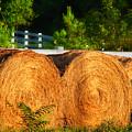 Hay Bales by Todd A Blanchard