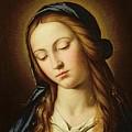 Head Of The Madonna by Il Sassoferrato
