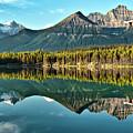 Herbert Lake - Quiet Morning by Jeff R Clow