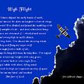 High Flight by Mike Flynn