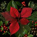 Holiday Greenery by Deborah J Humphries