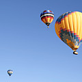 Hot Air Balloon Ride A Special Adventure by Christine Till