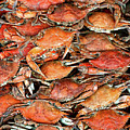 Hot Crabs by Sky Noir Photography by Bill Dickinson