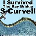 I Survived the Bay Bridge S.Curve Print by Wingsdomain Art and Photography