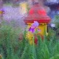 Iris And Fire Plug by David Lane
