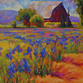Iris Field by Marion Rose