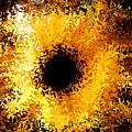 Iris by Michael Garyet