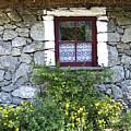 Irish Cottage Window County Clare Ireland by Teresa Mucha