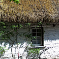 Irish Farm Cottage Window County Cork Ireland by Teresa Mucha