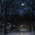 January Moon by Sarah Yuster