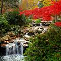 Japanese Garden Brook by Jon Holiday