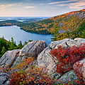 Jordan Pond Sunrise  by Susan Cole Kelly