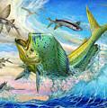 Jumping Mahi Mahi And Flyingfish by Terry Fox