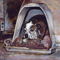 Junkyard Dog by Harvie Brown