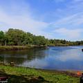Kayaking The Cotee River by Barbara Bowen