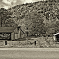 Kindred Barns Sepia by Steve Harrington