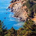 Kirby Cove San Francisco Bay California by Utah Images