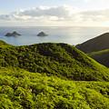 Lanikai Hills by Dana Edmunds - Printscapes