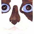 Large Eyed Cat Oswoa by Christine Callahan