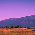Late Afternoon In Taos by David Patterson