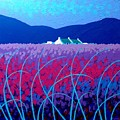 Lavender Scape by John  Nolan
