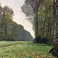 Le Pave De Chailly by Claude Monet