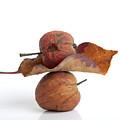Leaf And Apples by Bernard Jaubert