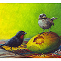 Lesser Antillean Bullfinches And Mango by Christopher Cox