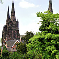 Lichfield Cathedral From Minster Pool by Rod Johnson