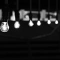 Light Bulbs by Carl Suurmond