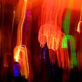 Light Falling by Elizabeth Hoskinson
