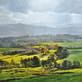 Light In The Valley At Rhug. by Harry Robertson