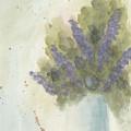 Lilacs by Ken Powers