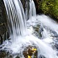 Little Elbow Waterfall by Thomas R Fletcher