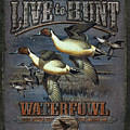 Live To Hunt Pintails by JQ Licensing